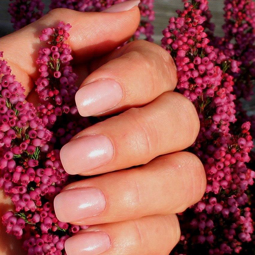 Pflanze und Nägel